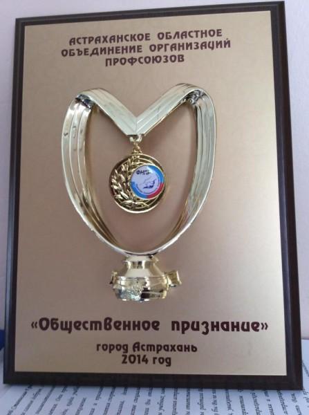 """Астраханским профобъединением учрежден знак """"Общественное признание"""""""